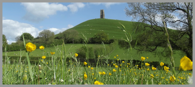 Day in the life of a Somerset Probate lawyer